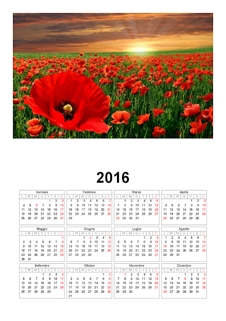 Calendario 2016 - papaveri