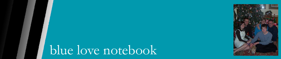 blue love notebook