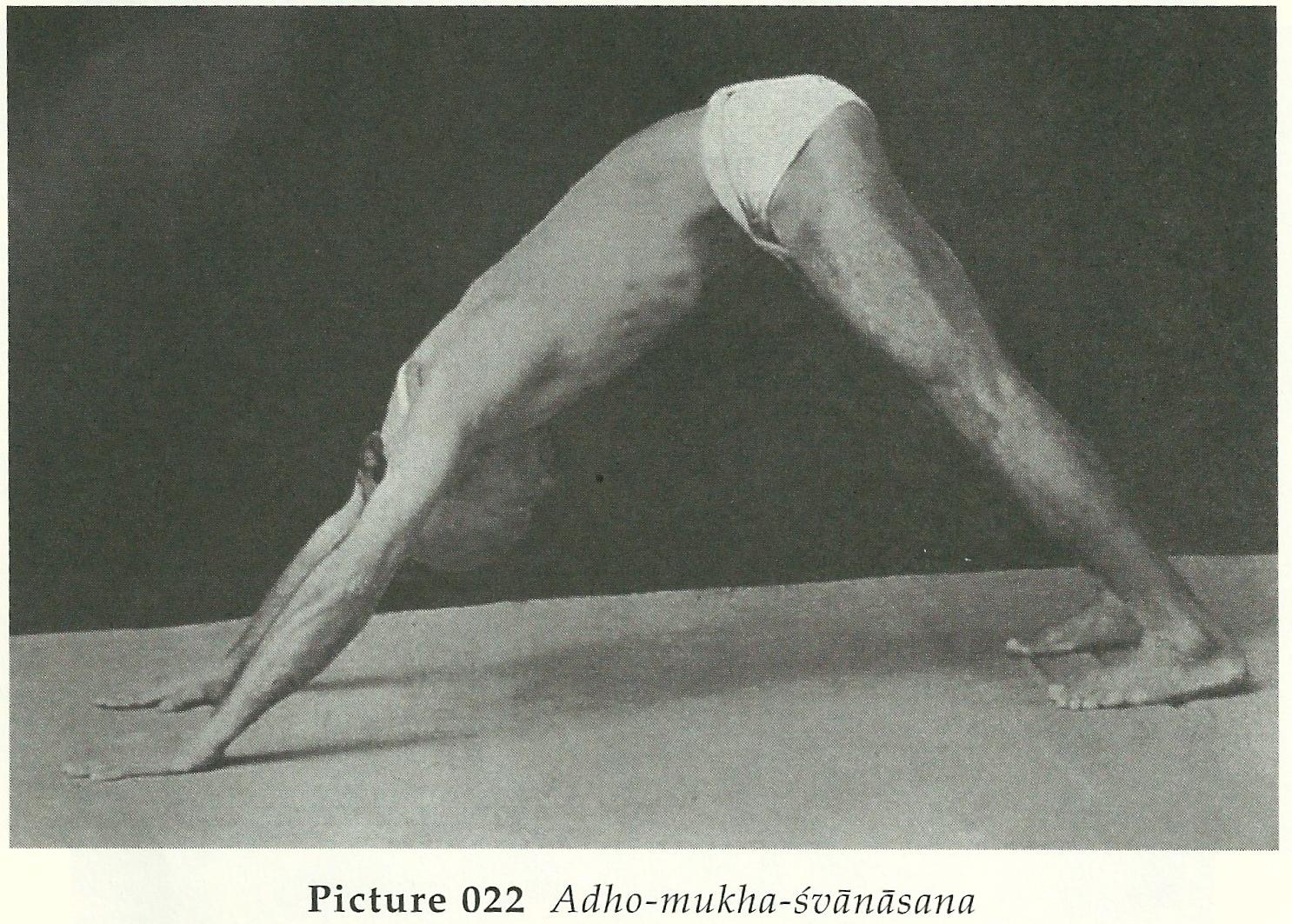 Krishnamacharyas Original Ashtanga Vinyasa Krama Yoga And