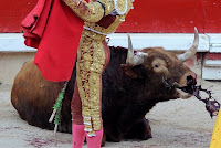PEDIMOS A LA UNESCO QUE LOS TOROS NO SEAN DECLARADOS PATRIMONIO DE LA HUMANIDAD