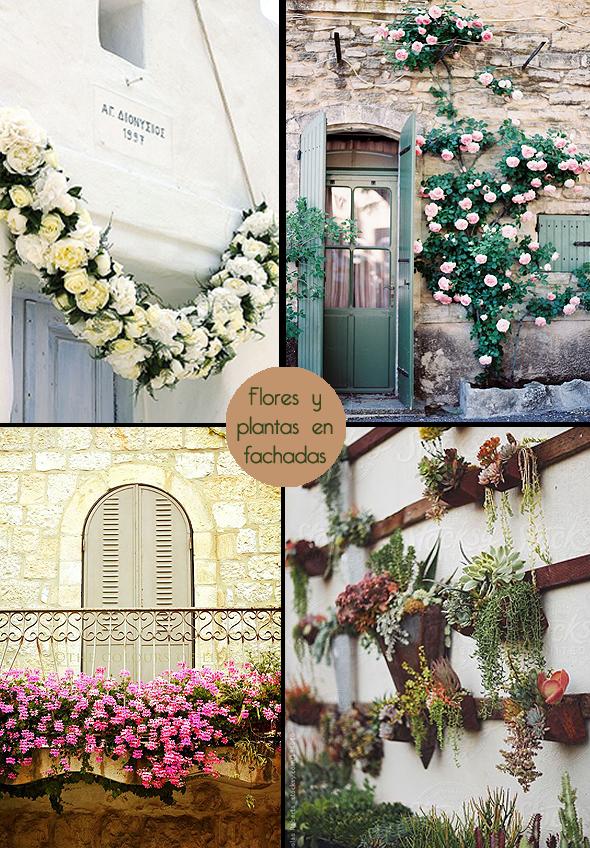 flores y plantas en fachadas