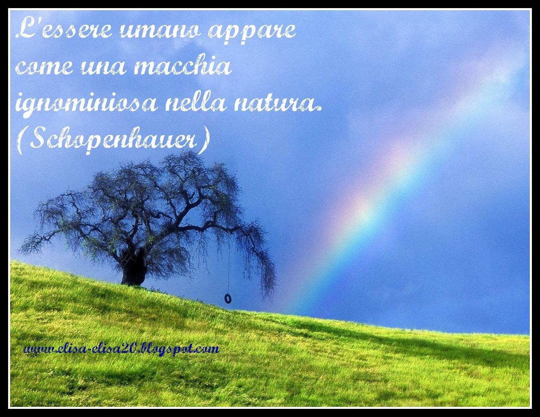Popolare Aforismi, citazioni, frasi sulla natura (4) CU83