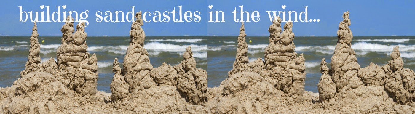 BUILDING SAND CASTLES IN THE WIND...