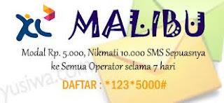 Sms Murah XL 2013