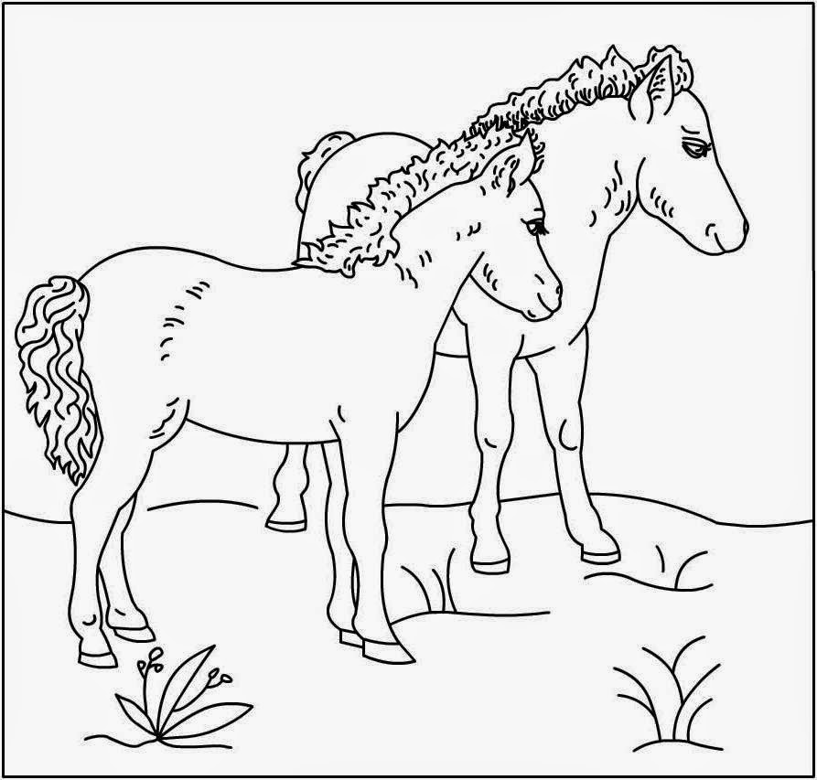 horse coloring pages for free