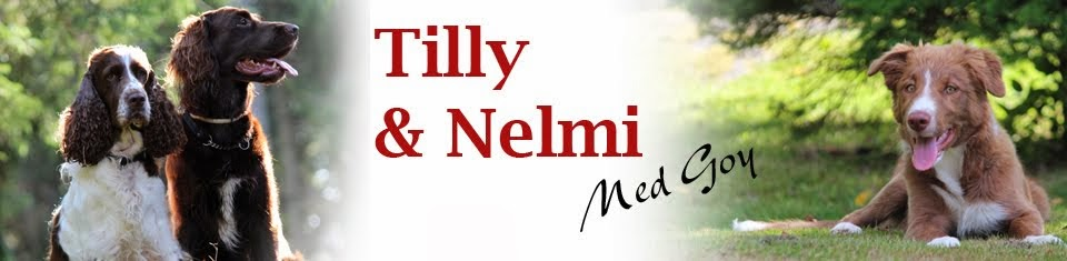 Tilly o Nelmi