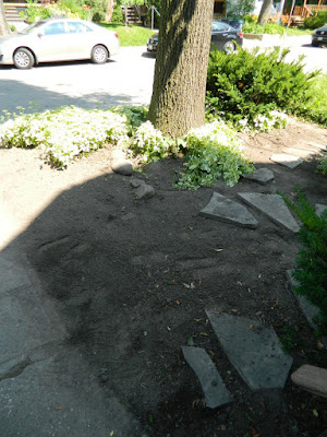 Paul Jung Gardening Services Toronto Leslieville front garden clean up after