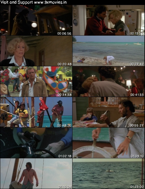 Jaws 4 The Revenge 1987 Dual Audio Hindi 720p HDTV