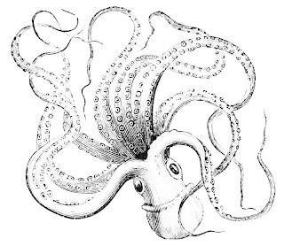 L'être le tapote avec l'une de ses tentacules