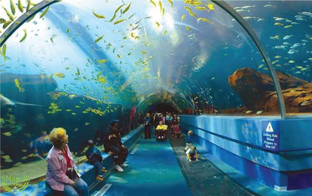 World's Most Famous Aquariums