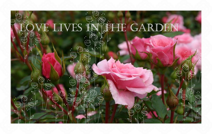 Love lives in the garden...