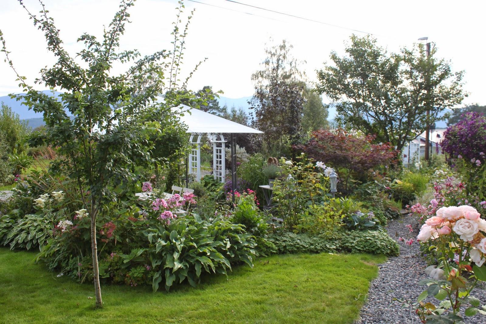 Nina i Paradiset: Mine m?-ha-planter i hagen del 1.