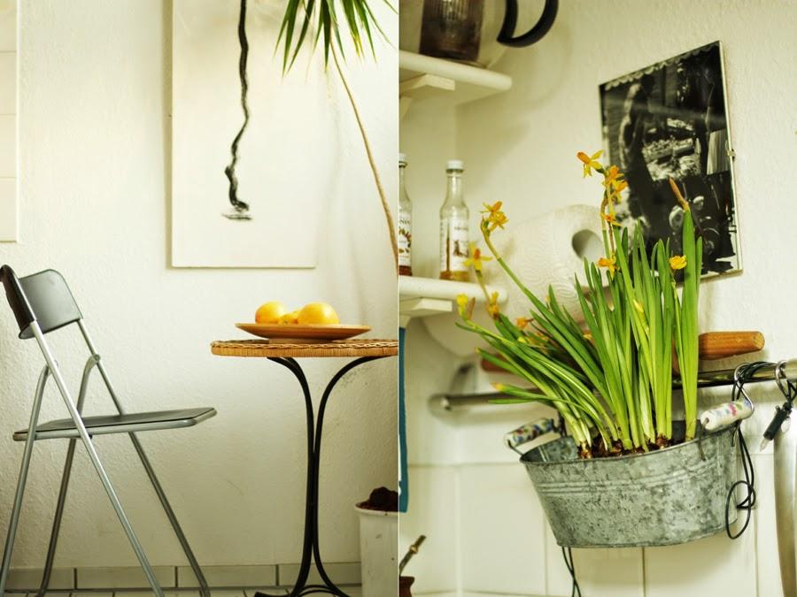 küche osterglocken pflanze einrichtung airbnb