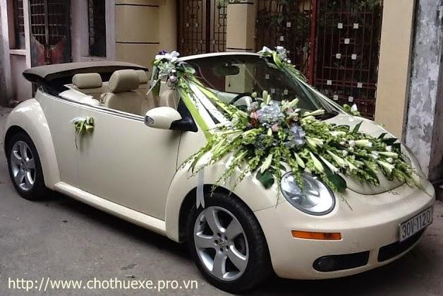 Cho thuê xe cưới mui trần Volkwagen Beelte