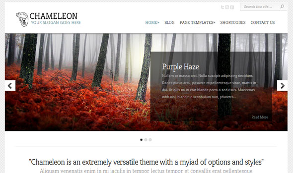 Chameleon Wordpress Theme Free Download by ElegantThemes.