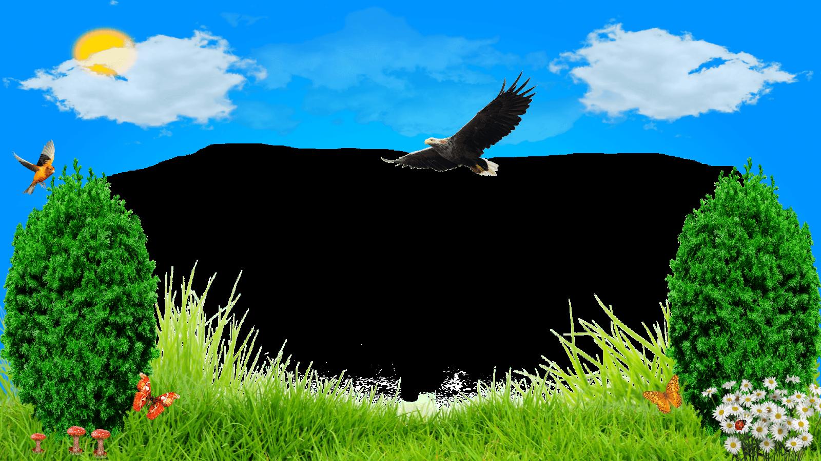 Moldura Primavera - Pássaros png