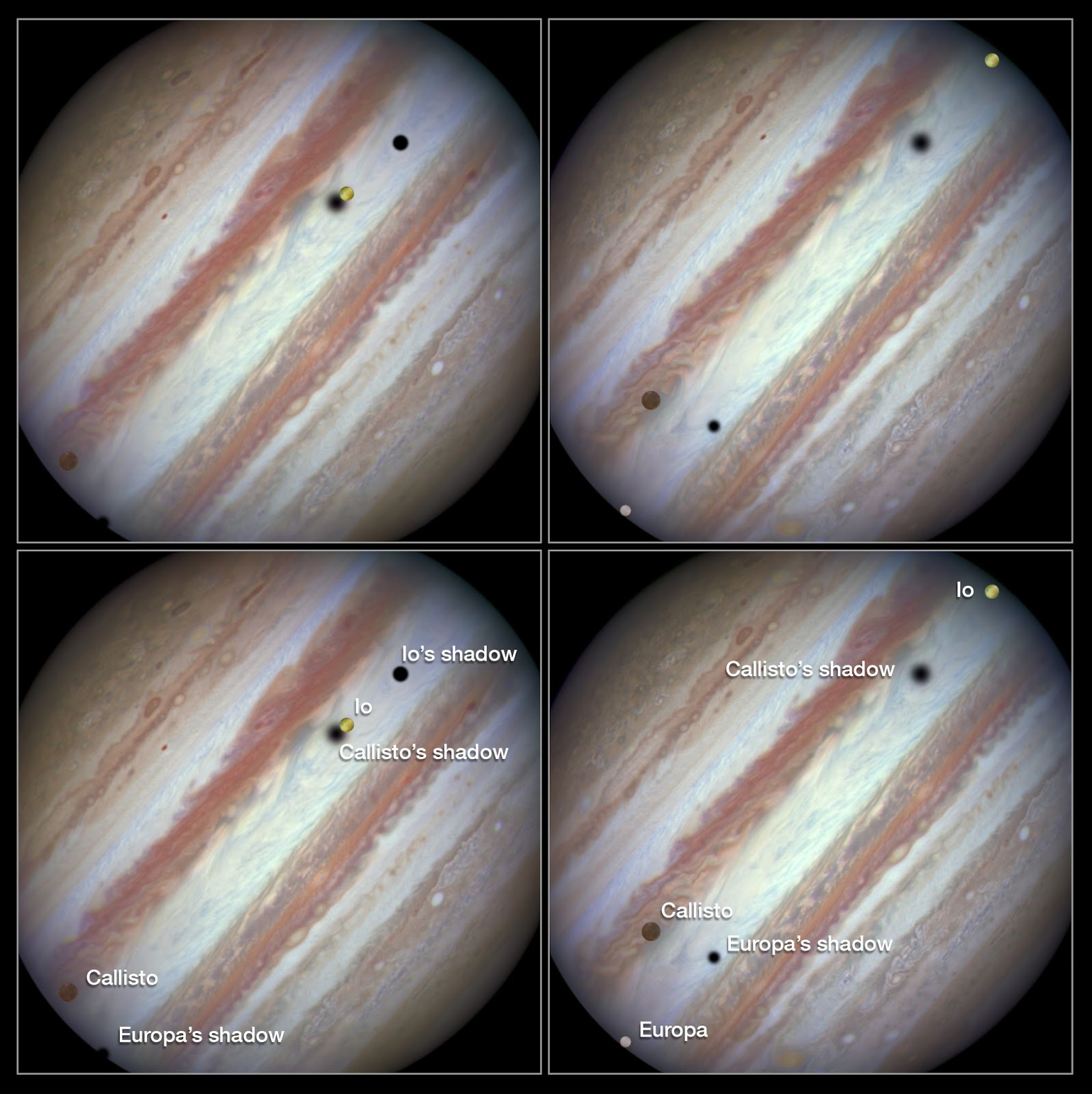 Three moons and their shadows parade across Jupiter Three moons and their shadows parade across Jupiter   These new NASA/ESA Hubble Space Telescope images capture a rare occurrence as three of Jupiter's largest moons parade across the giant gas planet's banded face.  The image on the left shows the Hubble observation at the beginning of the event. On the left is the moon Callisto and on the right, Io. The shadows from Europa, which cannot be seen in the image, Callisto, and Io are strung out from left to right.  The image on the right shows the end of the event, approximately 42 minutes later. Europa has entered the frame at lower left with slower moving Callisto above and to the right of it. Meanwhile Io — which orbits significantly closer to Jupiter and so appears to move much more quickly — is approaching the eastern limb of the planet. Whilst Callisto's shadow seems hardly to have moved Io's has set over the planet's eastern edge and Europa's has risen further in the west.  Image Credit: NASA, ESA, Hubble Heritage Team Explanation from: http://www.spacetelescope.org/images/heic1504a/