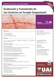 Evaluación  y Tratamiento de  las Cicatrices en T.O.