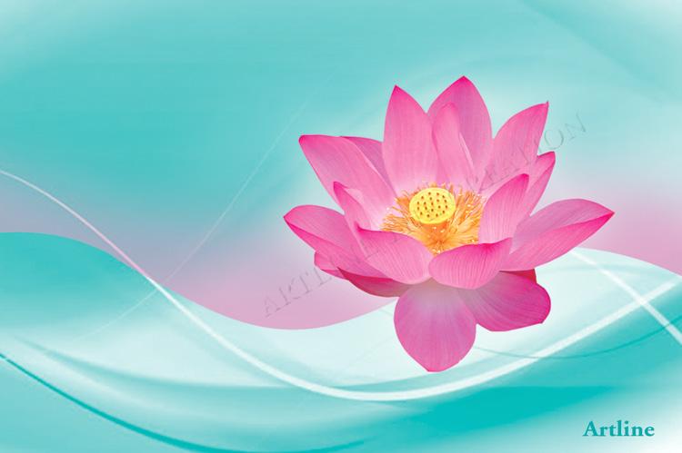 High Quality HD Flower Wallpaper Pink Lotus
