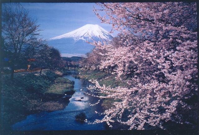 postal monte fuji japon japan