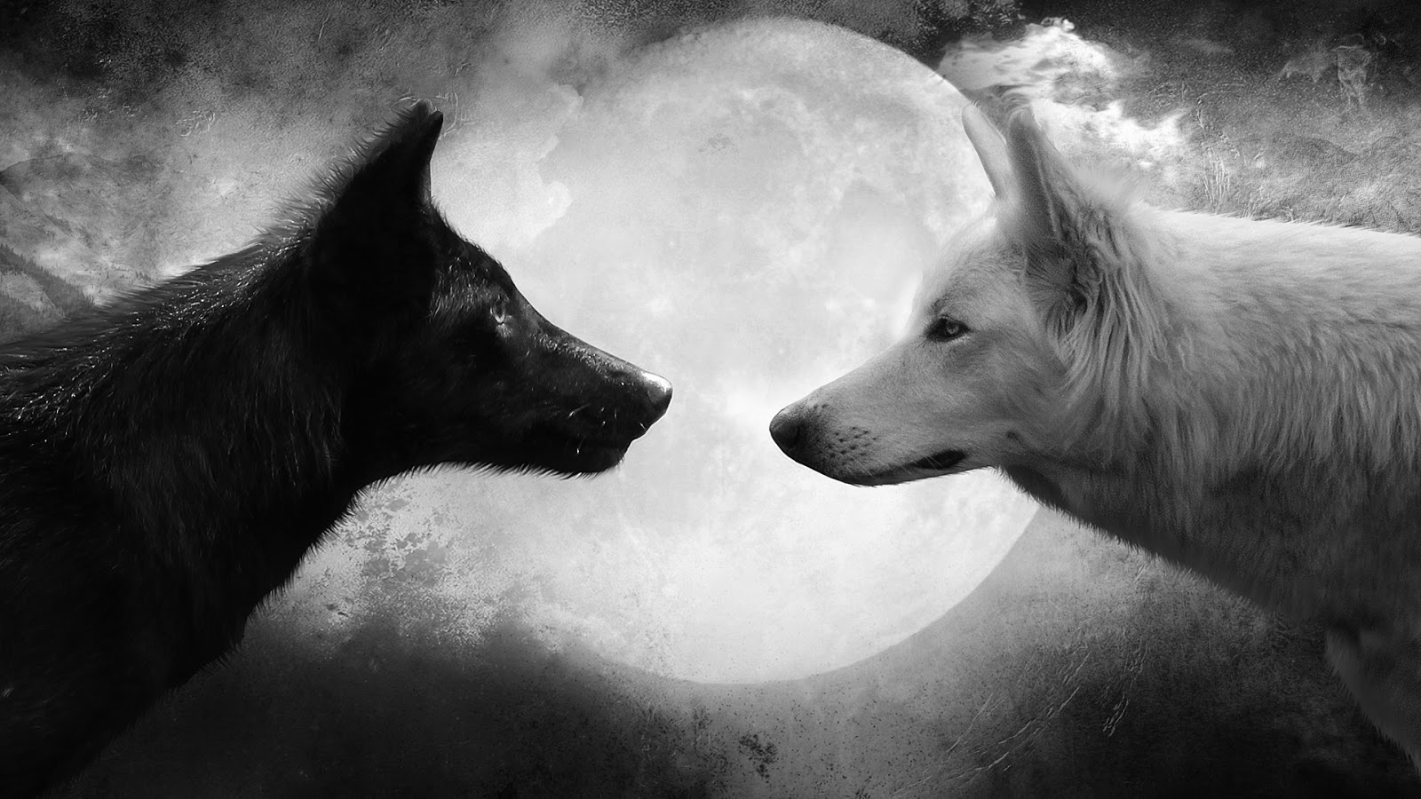 Download Wallpaper Mac Wolf - Wolf-and-Moon-Cool-HD-Wallpapers  Best Photo Reference_146019.jpg