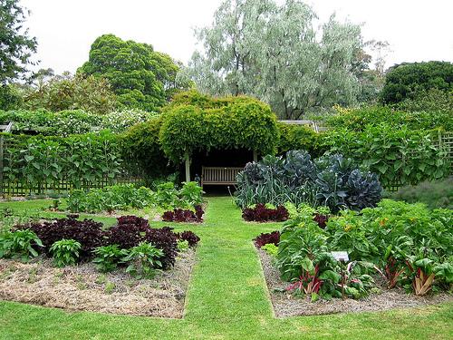 August 2012 English Garden