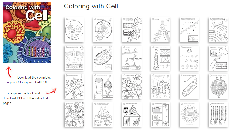 Color In Comics Cell Presss Second Coloring Book Recently Had It Debut At The 2015 American Society For Neuroscience Conference Chicago