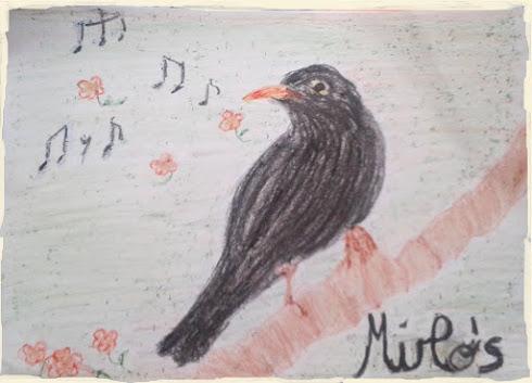 Mirlo's es música, canto, creatividad, armonía, crecimiento personal...