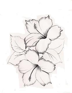 dois hibiscos para pintar