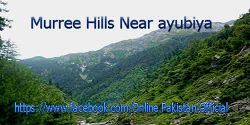 ayubiya murre hills photos