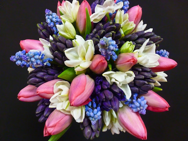 florissimo: rites of spring