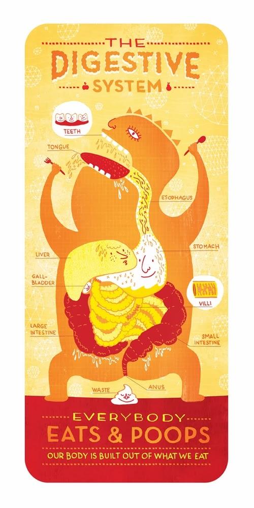 02-Digestive-System-Body-System-Graphic-Designer-Illustrator-Rachel-Ignotofsky
