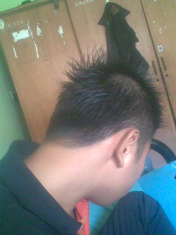 Rambut Mohawk