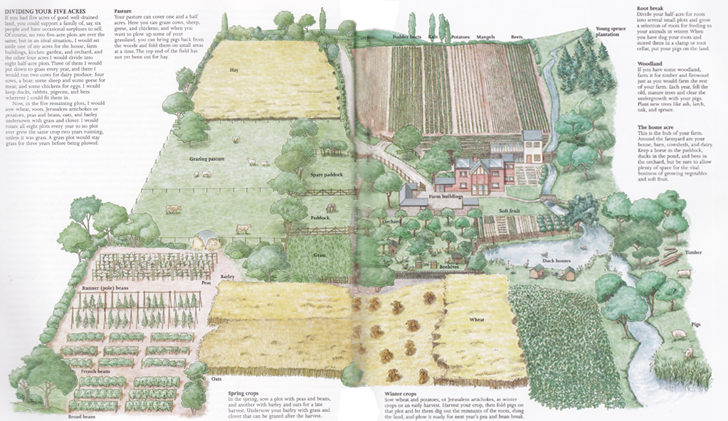 1 acre hobby farm layout related keywords 1 acre hobby for 1 acre farm layout