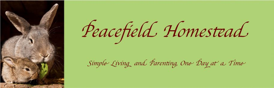 Peacefield Homestead