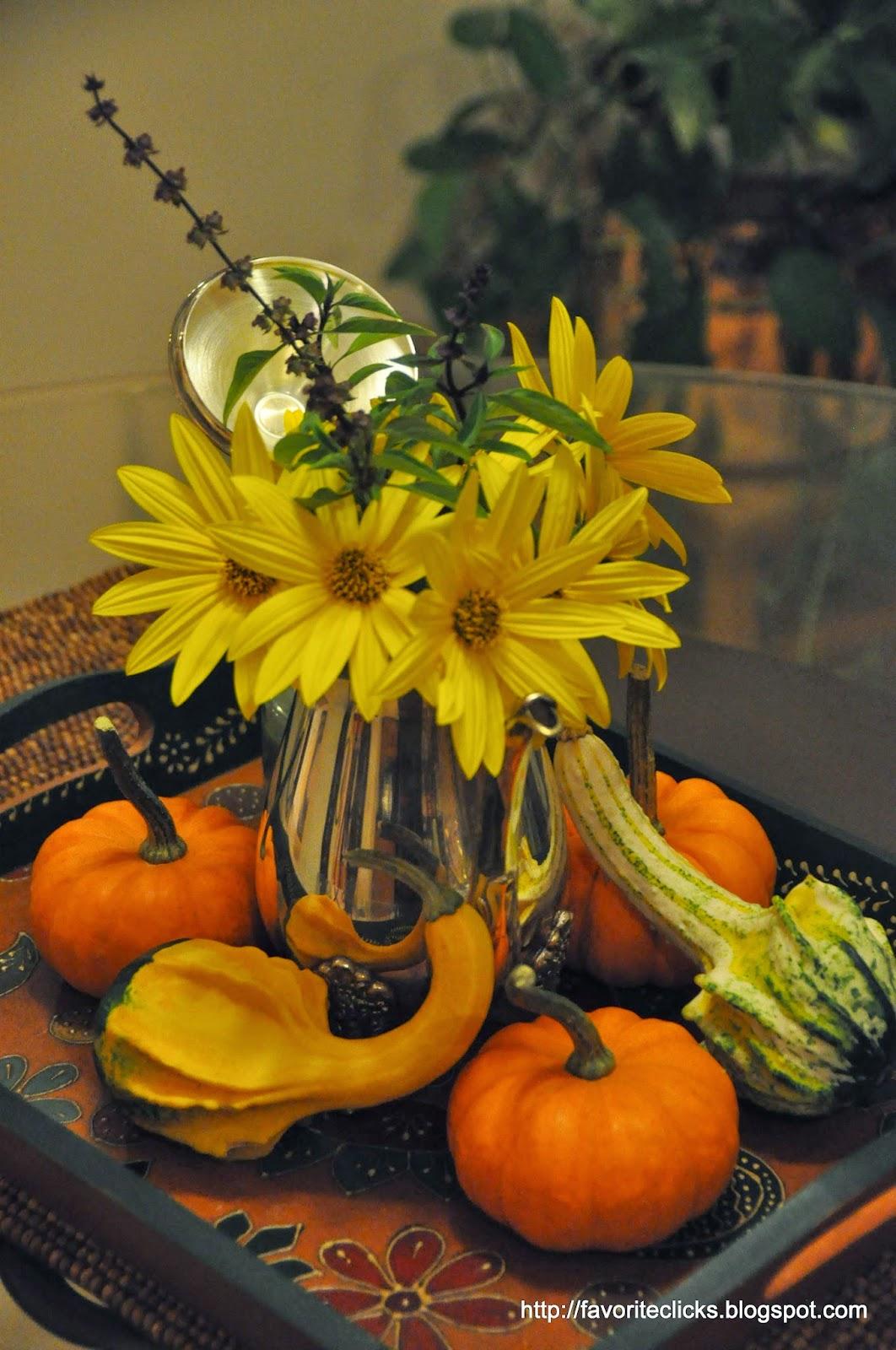 mini pumpkins and gourds decor