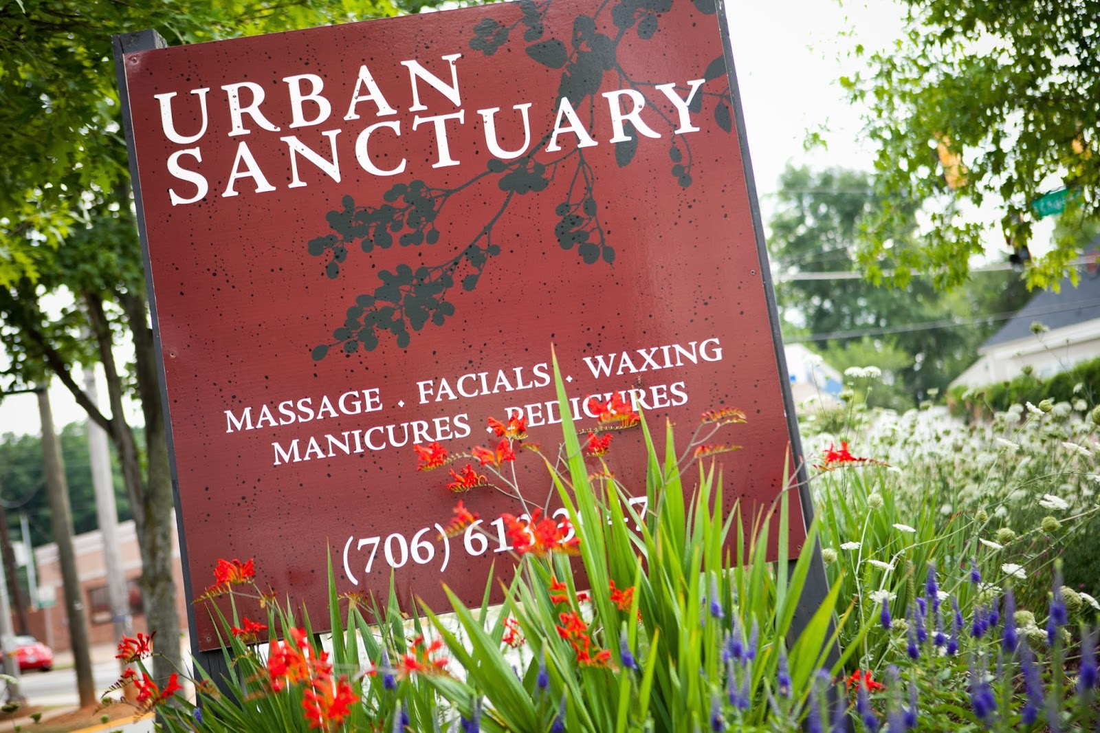 urban sanctuary january 2015