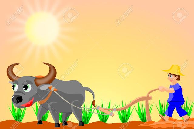 Ilustrasi: Petani sedang si sawah