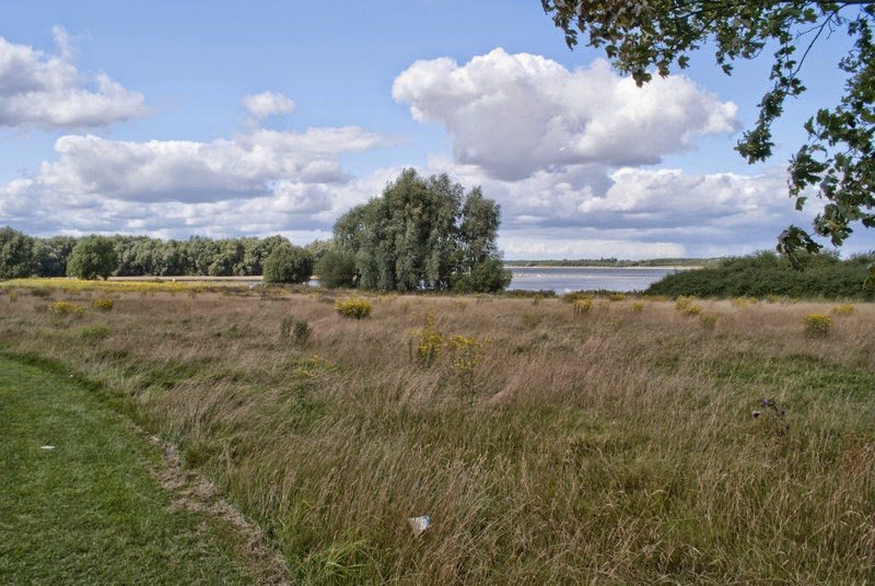 Grafham Water Nature Reserve