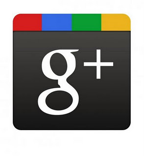 Fungsi Google Plus One