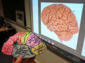 SKS Psychology Blog