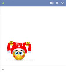 Swiss football fan