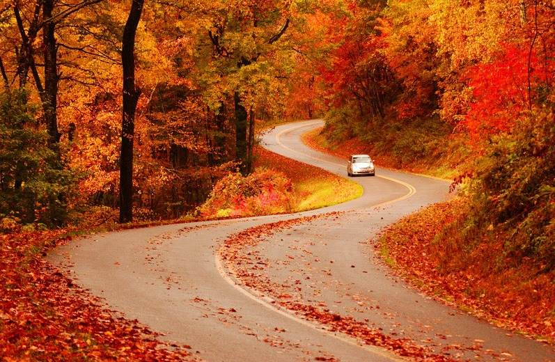 Shenandoah National Park, Virginia - Most Breathtaking National Parks to Visit for Fall Colors