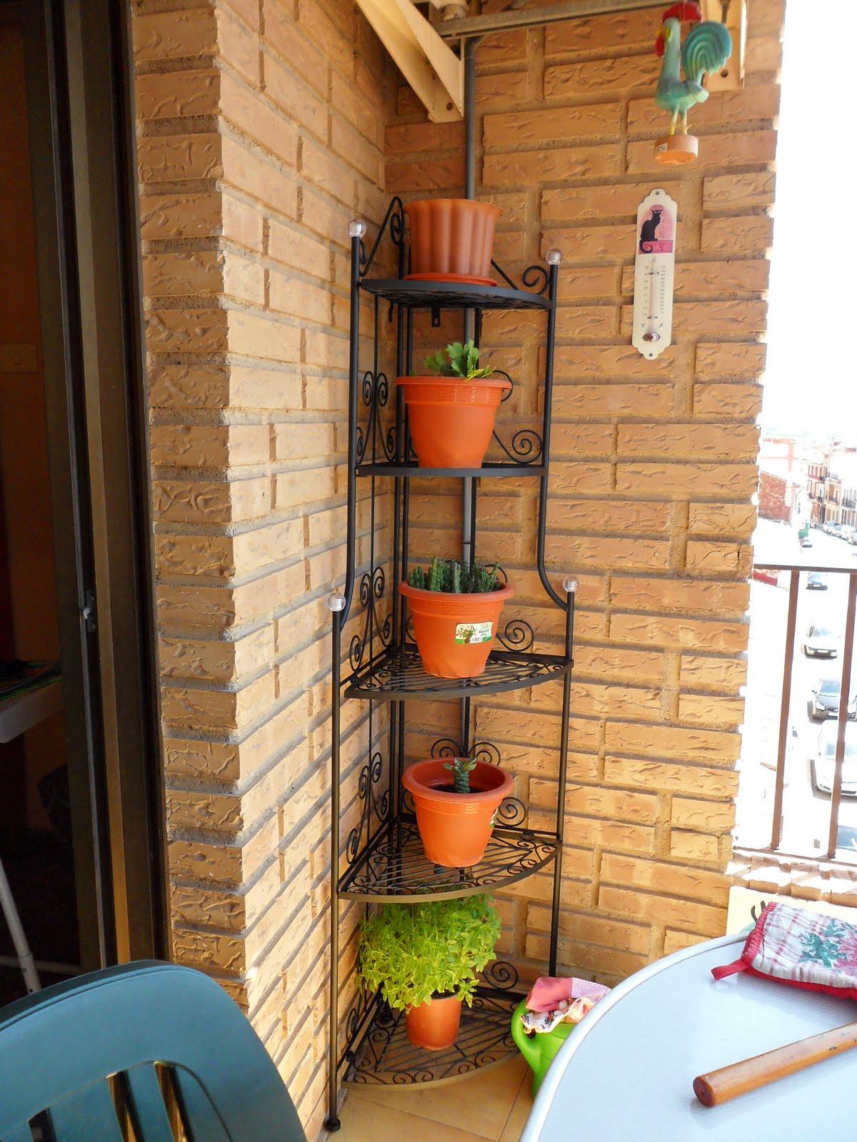Pasin por las plantas Estantera para cactus nueva