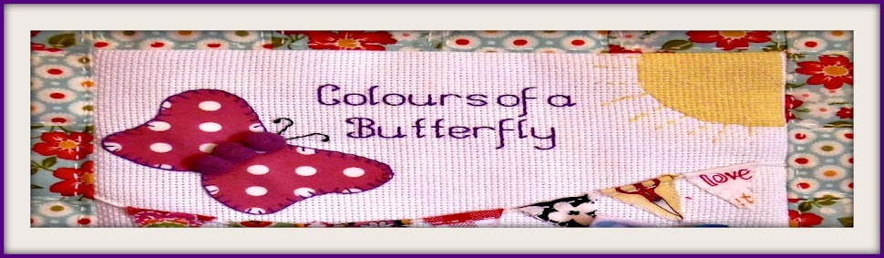 Colours of a butterfly