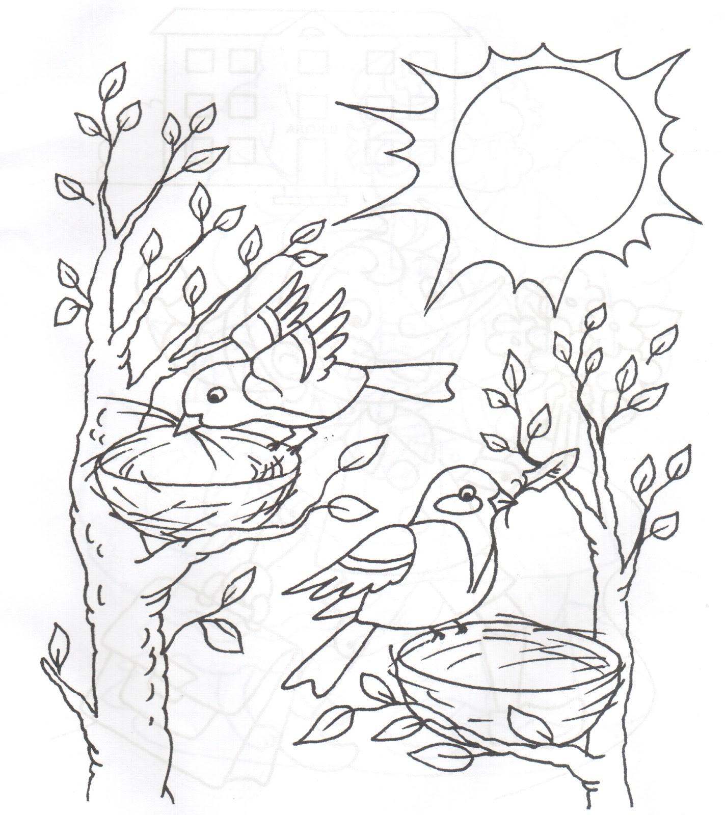 Раскраски птицы на дереве