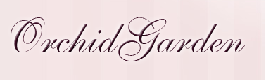 http://orchidgarden.pl/