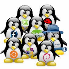 Cara Instalasi Linux