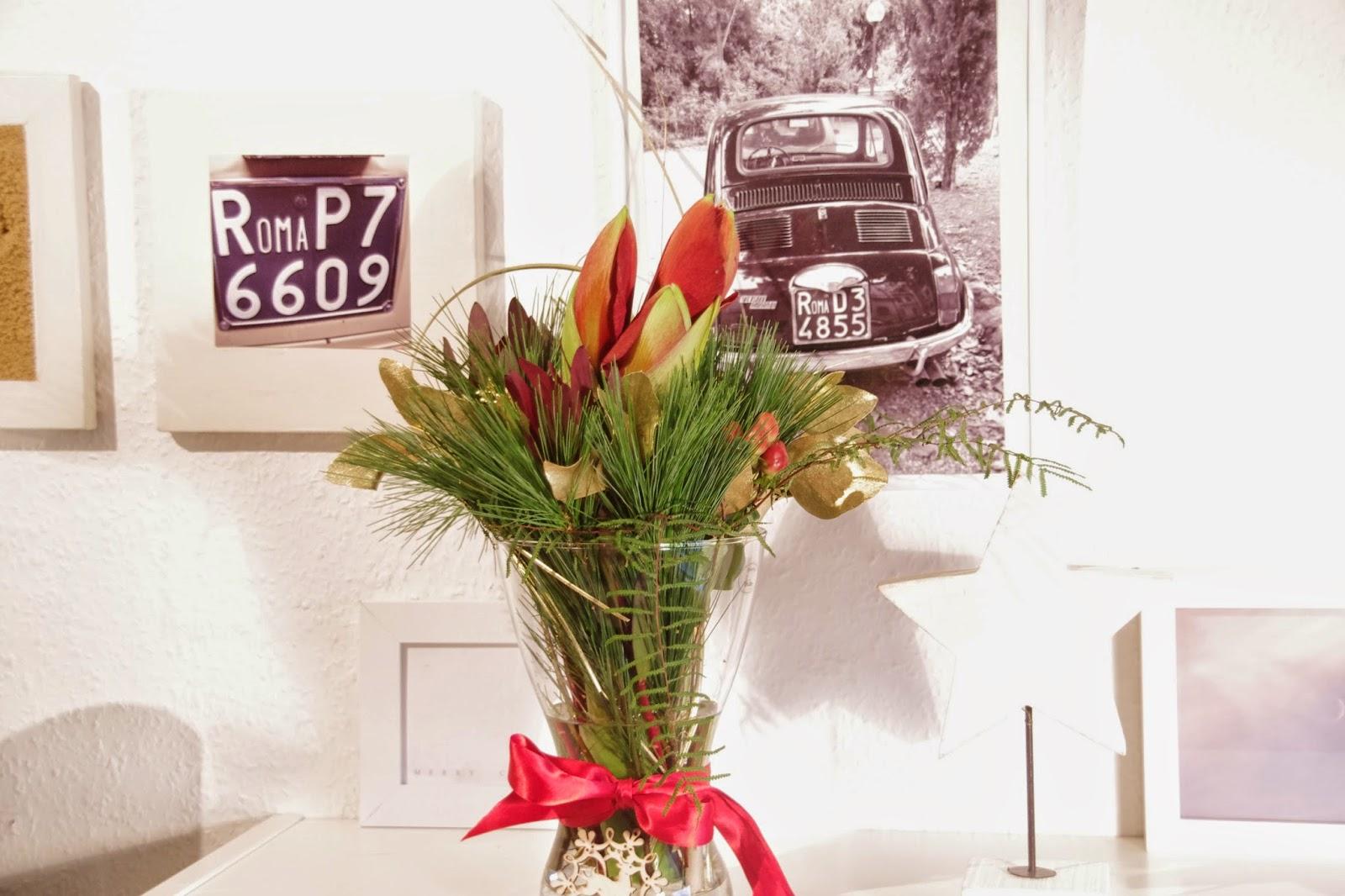 amaryllis berraschung. Black Bedroom Furniture Sets. Home Design Ideas