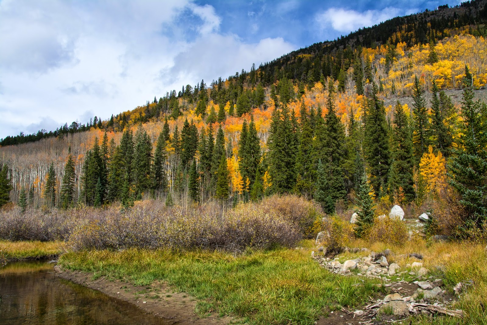 Cottonwood Pass Fall Foliage